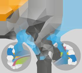 databerry rider